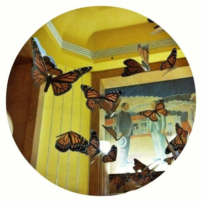 130608 butterflies
